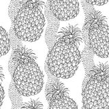 Vector seamless pattern with outline Ananas or Pineapple and stripes on the white background. Fruit pattern with tropical plant. Royalty Free Stock Images