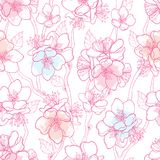 Vector seamless pattern with outline blooming Apricot flower bunch, branch and ornate leaves in pastel pink on white background. Stock Images
