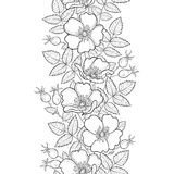Vector seamless pattern with outline Dog rose or Rosa canina. Flower, hips and leaves on the white background. Royalty Free Stock Photo