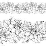 Vector seamless pattern with outline Gardenia. Ornate flower, bud and leaves in black on the white background. Floral border. Stock Photo
