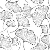 Vector seamless pattern with outline Gingko or Ginkgo biloba leaves in black on the white background. Floral pattern with Gingko. Royalty Free Stock Photos