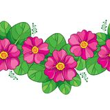 Vector seamless pattern with outline pink Primula or Primrose flower and green leaves on the white background. Horizontal border. Stock Images
