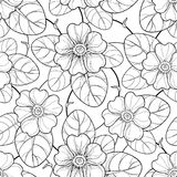 Vector seamless pattern with outline Primula or Primrose flower and leaf in black on the white background. Floral pattern. Stock Image