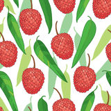 Vector seamless pattern with outline red Chinese Lychee or Litchi fruit and green leaf on the white background. Fruit pattern. Stock Photo