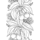 Vector seamless pattern with outline ripe Cherry, berry and leaf in black on the white background. Vertical border with cherry. Royalty Free Stock Images