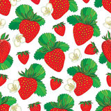 Vector seamless pattern with outline Strawberry. Red berry, flowers and green leaf on the white background. Floral background. Royalty Free Stock Photo