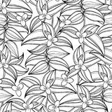 Vector seamless pattern with outline Tradescantia or Wandering Jew flower and ornate leaf in black on the white background. Tradescantia pattern in contour Stock Image