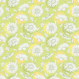 Vector seamless pattern with outline white Chamomile flower on the pastel background. Chamomile pattern in contour style. Royalty Free Stock Photography