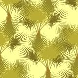 Vector seamless pattern of palm trees Stock Photography