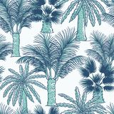 Vector seamless pattern of palmtrees. Different kinds of tropical palm contour sketch background monochrome turquoise. Isolated on white background vector illustration