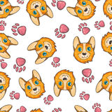 Vector seamless pattern with pembroke welsh corgi on white background with footsteps. Stock Photo