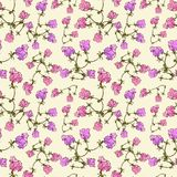 Vector seamless pattern with pink flowers Stock Photography