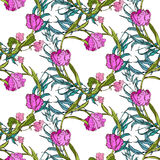 Vector seamless pattern with pink flowers and blue leaves Royalty Free Stock Photography