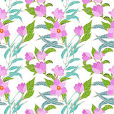Vector seamless pattern with pink magnolia flowers Stock Image