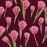 Vector seamless pattern, pink tulip flowers on brown background. Background floral design for wedding, engagement stock illustration