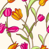 Vector seamless pattern with pink and yellow tulip flowers. Royalty Free Stock Photo