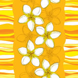 Vector seamless pattern with Plumeria or Frangipani flower in yellow and stripes on the orange background. Royalty Free Stock Photography