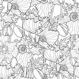 Vector seamless pattern with poppies. Hand drawn artistic ethnic ornamental patterned floral frame in doodle, zentangle style for adult coloring pages, t-shirt Stock Image