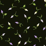 Seamless pattern with purple and white flower buds. Vector illustration. Stock Images