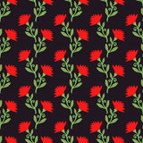 Vector seamless pattern with red flowers on dark. Floral background. Royalty Free Stock Photos