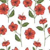 Vector seamless pattern of red hibiscus branches vector illustration