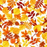 Seamless pattern with colorful autumn leaves. Vector illustration. royalty free illustration