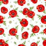 Seamless pattern with red poppies. Vector illustration. Royalty Free Stock Photos