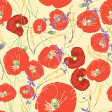 Vector seamless pattern with red poppies, white daisies, blue cornflowers and ears of wheat. On a green background Stock Image