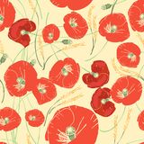 Vector seamless pattern with red poppies, white daisies, blue cornflowers and ears of wheat. On a green background Royalty Free Stock Image