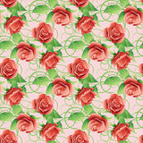 Vector seamless pattern with red roses. Royalty Free Stock Images