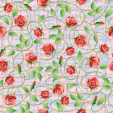 Vector seamless pattern with red roses. Stock Photos