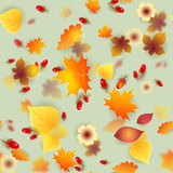 Vector seamless pattern with red and yellow autumn leaves Stock Photography