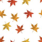 Vector seamless pattern with red, yellow and orange maple leaves. Colors of autumn nature for your design. Vector seamless pattern with red, yellow and orange royalty free illustration