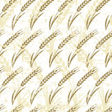 Vector seamless pattern with ripe ear of wheat. Stock Photo