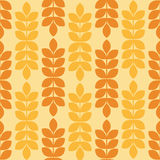 Vector seamless pattern with ripe ears of wheat. Stock Photos