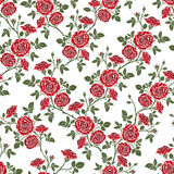 Vector seamless pattern - romantic red roses. Royalty Free Stock Photo