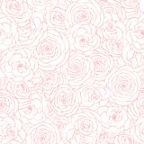 Vector seamless pattern with rose flowers pink outline on the white background. Hand drawn floral repeat ornament vector illustration