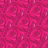 Vector seamless pattern with roses Stock Image