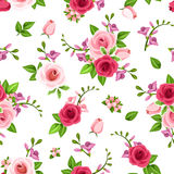 Vector seamless pattern with roses and freesia flowers. Vector seamless pattern with red and pink roses and freesia flowers on a white background Stock Image