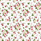 Vector seamless pattern with roses and freesia flowers. Stock Images