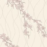 Vector seamless pattern with sakura branch royalty free illustration