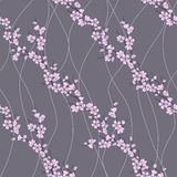 Vector seamless pattern with sakura branch Royalty Free Stock Image