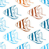 Vector seamless pattern with scalar fishes Royalty Free Stock Photography