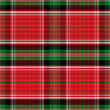 Vector seamless pattern Scottish tartan Stewart Stock Image