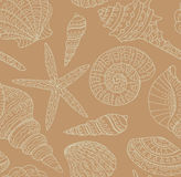 Vector seamless pattern with seashells. Stock Image