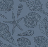 Vector seamless pattern with seashells. Stock Photography