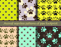 Vector seamless pattern set with cat or dog footprints. Vector colour animal footprints. Vector seamless pattern set with cat or dog footprints. Can be used for Royalty Free Stock Images