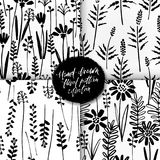 Vector seamless pattern set of ink drawing wild plants, herbs, monochrome botanical illustration, floral elements, hand. Drawn repeatable backgrounds. Artistic stock illustration