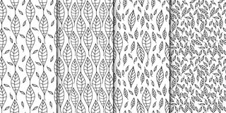Vector seamless pattern set. Linear graphic design. Decorative outlined leaves. Stock Photos