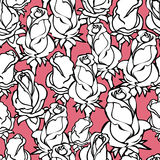 Vector seamless pattern with silhouette  white roses on rose background. Royalty Free Stock Images